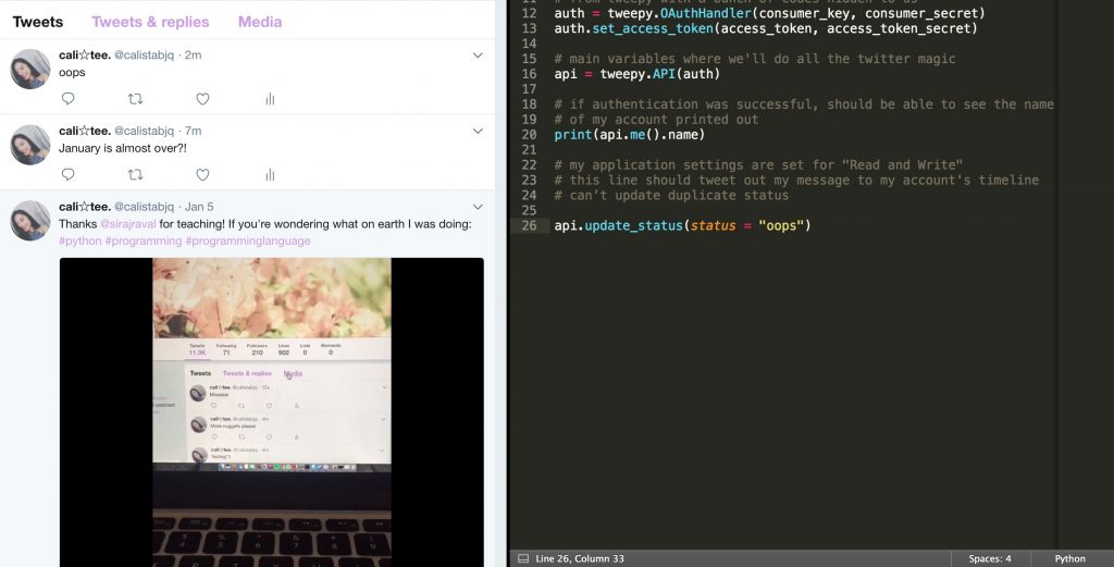 Python: Update Twitter From Your Terminal — Calista Tee
